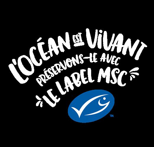 L'océan est vivant